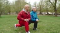 Senior Couple Improving Flexibility video