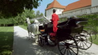 DS Senior couple in a horse drawn carriage video