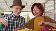 Senior couple in greenhouse video
