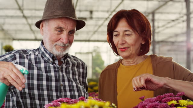 Senior couple in greenhouse video