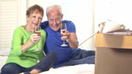 Senior couple moving, celebrating with champagne toast video