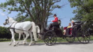 DS Senior couple on a carriage ride through a park video