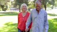 Senior Couple On Romantic Walk Through Park Together video