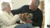 Senior Couple Relaxing At Home With Pet Dog video