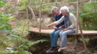 Senior couple sitting on a wooden bridge in forest video