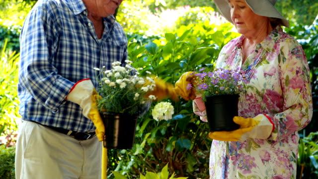 Senior couple talking together video