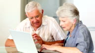 Senior couple using laptop together video