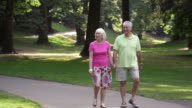 Senior couple walk in park video