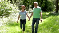 Senior Couple Walking Along Summer Woodland Path Together video