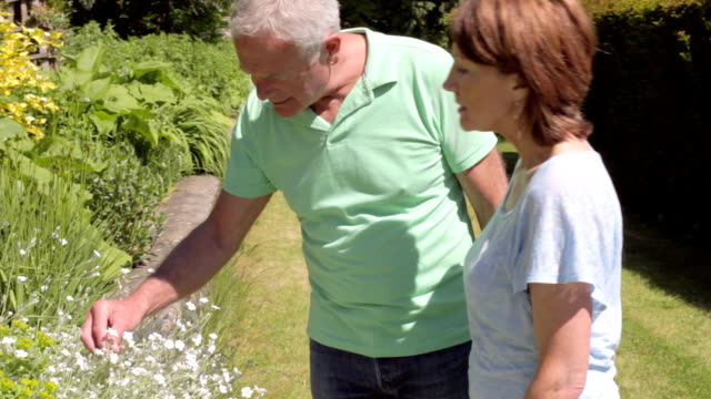 Senior Couple Walking Around Garden Together video