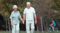 DS Senior couple walking in the park video