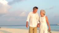 Senior Couple Walking On Beautiful Beach video