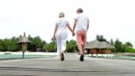 Senior Couple Walking On Wooden Jetty video