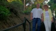 Senior couple walking to seaside through the woods video