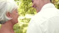 Senior couple walking together in the countryside video