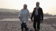 Senior Couple With Dog Walking On Beach video