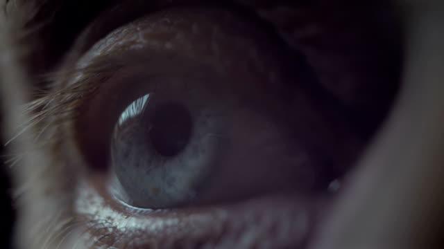 Senior eye macro video