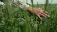 Senior Farmer contemplating farm video