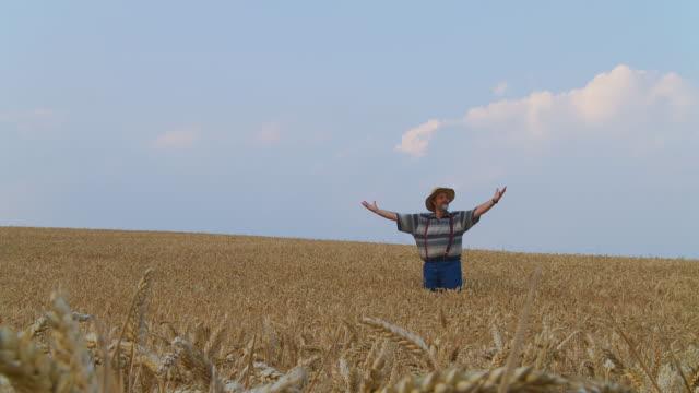 HD DOLLY: Senior Farmer In Wheat video