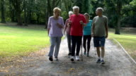 Senior friends holding hiking poles while walking in park video