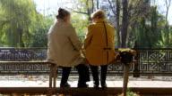 Senior Friends Talking In The Park video