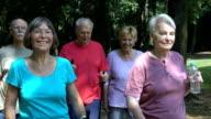 Senior friends talking while walking at park video
