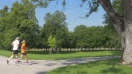 AERIAL Senior man and woman jogging through a park video