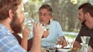 SLO MO Senior man clinking glasses with family at picnic video