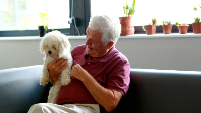 Senior man pampering dog video