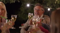 SLO MO Senior man proposing a toast at a picnic at night video