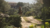 Senior man riding a galloping horse in farm video