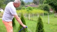 Senior men watering garden video