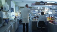 Senior scientist in white coat is greeting colleagues in a laboratory. video