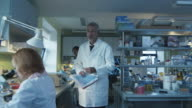 Senior scientist is walking with documents in a laboratory where colleagues are working. video