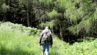Senior tourist couple hiking in the mountains video