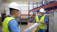 Senior warehouse worker discussing distribution order with Hispanic coworker video