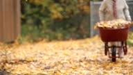 Senior woman pushing wheelbarrow video