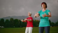 SLO MO DS Senior women doing tai chi in park video