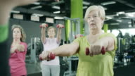 Senior women exercising video
