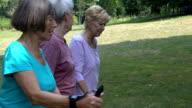 Senior women talking while walking in park video