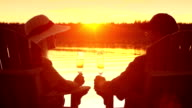 Seniors toast in their retirement by a lake. video