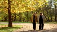 Seniors walking in a park video