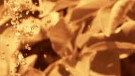 HD SLOW MOTION: Sepia Toned Water Drops video