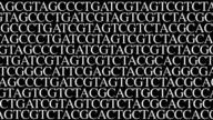 DNA sequence 3. Crawling random type/gfx GATC video