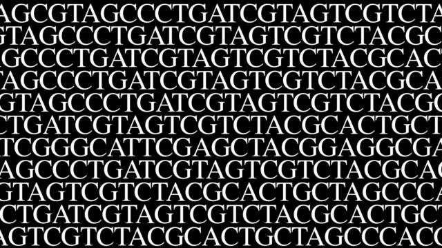 DNA sequence 3. Crawling random type/gfx GATC video