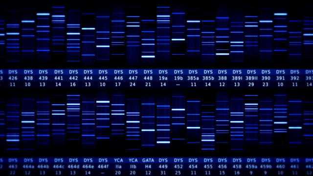 DNA Sequence. Frontal view. Black-Blue. video
