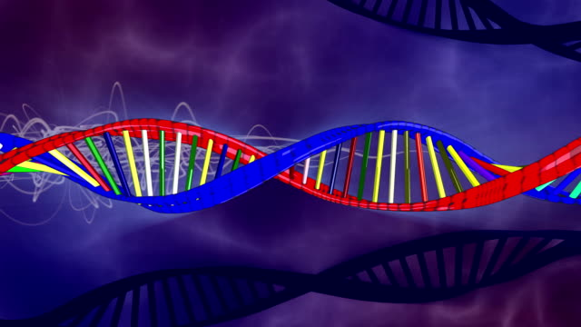 DNA sequence video