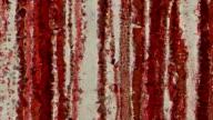 series transcendental fields : from blood rain (LOOP) video