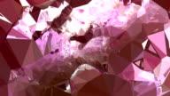 series transcendental fields : from peony, bright (LOOP) video