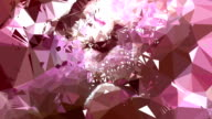 series transcendental fields : from peony, bright (TRANSITION) video
